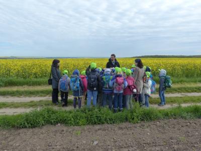 Hasen-Klasse der Staatlichen Grundschule Heinrich-Heine Jena