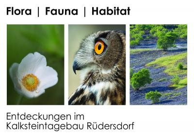 """Vorschaubild zur Meldung: Ausstellungseröffnung """"Flora, Fauna, Habitat – Entdeckungen im Kalksteintagebau Rüdersdorf"""""""