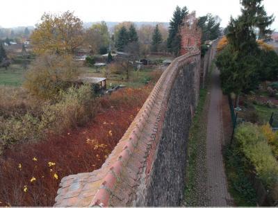 Vorschaubild zur Meldung: Bestandsaufnahme der Stadtmauerkrone Gransee