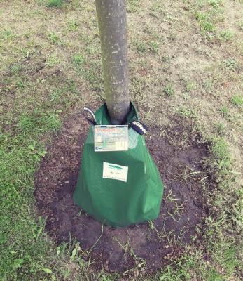Beispiel vom Treegator