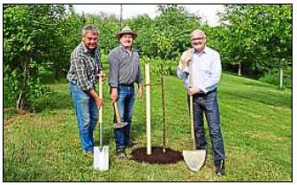 Vorschaubild zur Meldung: Neue Obstbäume für Rudertinger Streuobstwiese