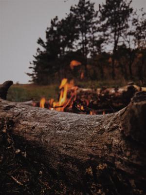 Foto zur Meldung: Erhöhtes Waldbrandrisiko! Das können Sie tun