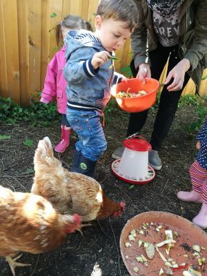 Foto zur Meldung: Hühner-Besuch in der Kita Schillerstraße