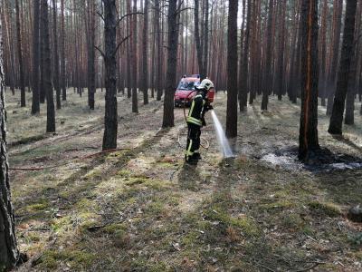 Foto zur Meldung: Waldbrand bei Emstal schnell gelöscht