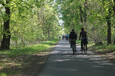 Foto zur Meldung: Sperrung des Radweges zwischen Kienbaum und Maxsiedlung