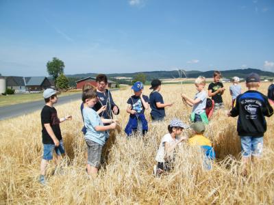 Foto zur Meldung: Sommer.Erlebnis.Bauernhof