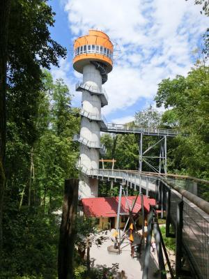 Vorschaubild zur Meldung: Der MTV lädt ein zu einer Halb-Tagesfahrt am 16.10. zum Baumkronenpfad Nationalpark Hainich