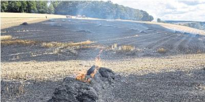 Foto zur Meldung: Serie von Feldbränden reißt nicht ab