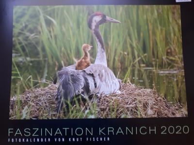 """Foto zur Meldung: Kalender """"Faszination Kranich 2020"""""""