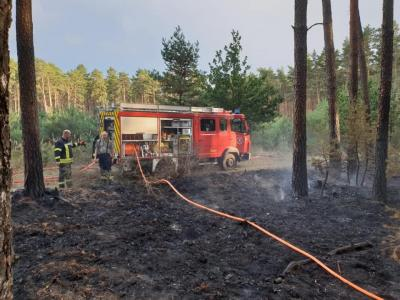 Foto zur Meldung: Feuer bei Krahne