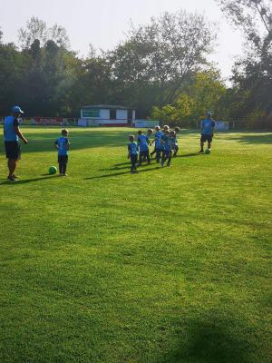 Bambinis TSV Blau-Weiß Eggersdorf