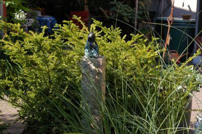 Foto zur Meldung: 2. Tag: Privatgärten mit besonderem Charme