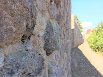 Vorschaubild zur Meldung: Arbeiten an der Stadtmauer Gransee