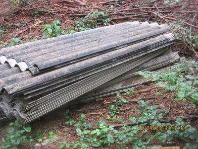 Illegale Ablagerung von Wellasbestzementplatten im Lappwald (Bild: Landkreis Helmstedt)