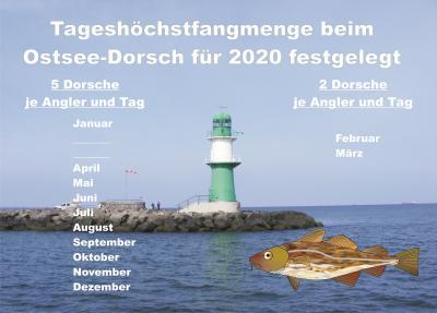 Vorschaubild zur Meldung: Fangquote 2020 bei Dorsch für die Ostsee festgelegt