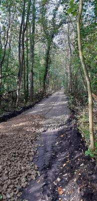 Vorschaubild : Ausbau von Waldbrandschutzwegen in der Stadt Uebigau-Wahrenbrück