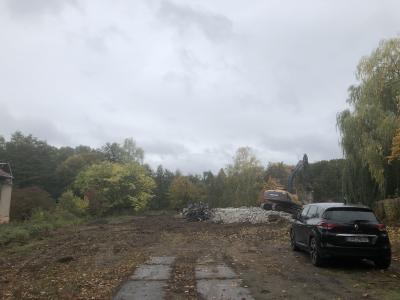 Foto zur Meldung: Kompromiss im Lehniner Baumstreit vereinbart