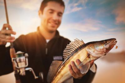Foto zur Meldung: Schließzeiten der Unteren Jagd- und Fischereibehörde