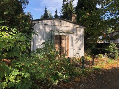 Foto vom Grundstück