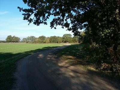 Vorschaubild zur Meldung: Friedhofsweg in Bornsdorf wird voraussichtlich im November gebaut