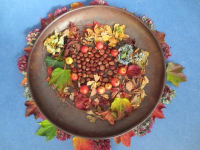 Vorschaubild zur Meldung: Herbstsingen der Primarstufen