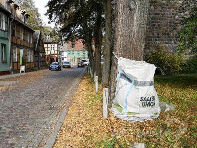 Seit einigen Tagen können an den Pritzwalker Straßen wieder Laubsäcke befüllt werden – aber nur mit Laub. Foto: Beate Vogel/Stadt Pritzwalk