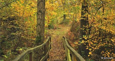 Vorschaubild zur Meldung: Einladung des Naturparkvereins - Unterwegs im Naturpark Hoher Fläming