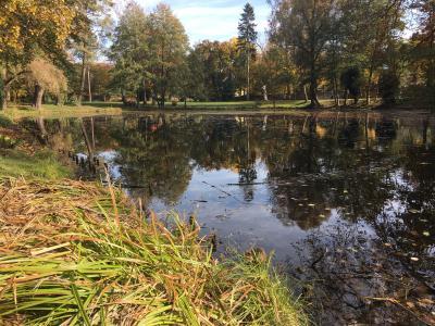 Vorschaubild zur Meldung: Spontaner Herbstputz am Schlosspark-Teich