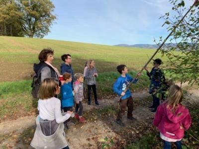 Vorschaubild zur Meldung: Walderlebnistag am 26.10.2019 in Eisdorf