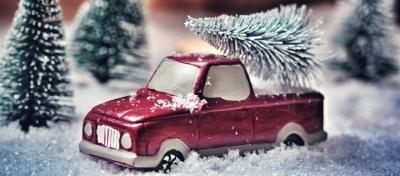 Vorschaubild zur Meldung: Vorabinformation zum Entsorgen von Weihnachtsbäumen
