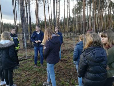 Foto zur Meldung: Lehniner Schüler und Foto-AG erkunden Waldbrand-Gebiete