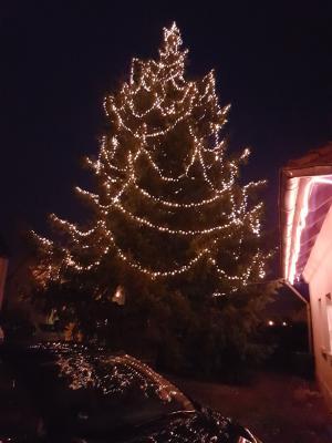 Der Weihnachtsbaum am Tintenfass 2018