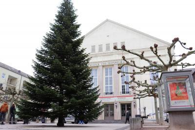 Seit dem Vormittag des 26. November schmückt eine 15 Meter hohe Nordmanntanne den Platz vor dem Kultur- und Festspielhaus I Foto: Martin Ferch