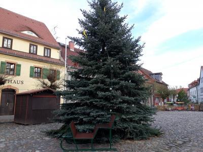 Weihnachtsbaum und Schlitten