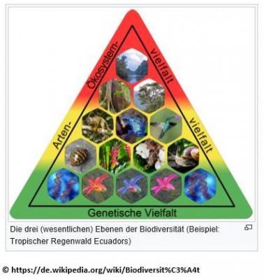 Vorschaubild zur Meldung: Informationen über die Bedeutung von Biodiversität