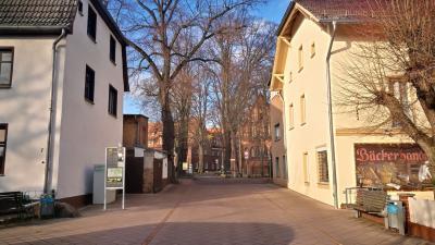 Foto zur Meldung: Warum gibt es am Lehniner Marktplatz keinen Weihnachtsbaum?