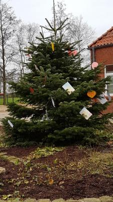Der Tannenbaum der Wünsche