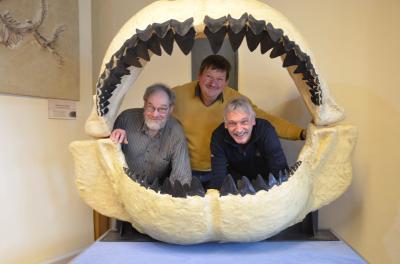 Foto zur Meldung: Rückkehr des Riesenhais