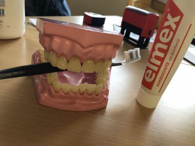 Vorschaubild zur Meldung: Die Zahnärztin zu Besuch