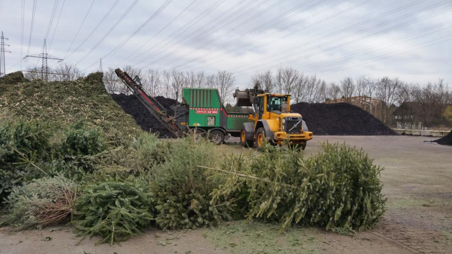 Wann werden die weihnachtsbäume abgeholt 2020