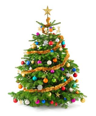 Vorschaubild zur Meldung: Abholung der Weihnachtsbäume am 18.01.2020