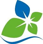 Foto zur Meldung: Grünschnitt an der Rathausfassade