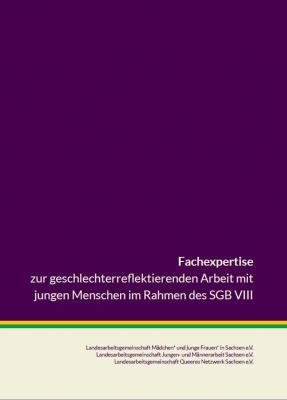 Fachexpertise zur Geschlechterreflektierenden Arbeit mit jungen Menschen veröffentlicht