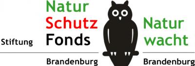Vorschaubild zur Meldung: Brandenburger Naturschutzpreis 2020: Vorschläge und Bewerbungen bis 24. April möglich