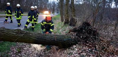 Foto zur Meldung: Zu zwei Einsätzen rückte die Kloster Lehniner Feuerwehr  aus