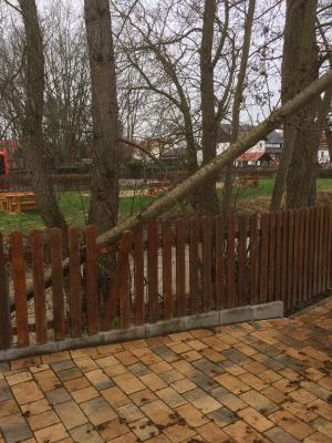 """Vorschaubild zur Meldung: Bauhof beseitigte Sturmschaden / Umgestürzter Baum neben dem """"weißen Haus"""""""