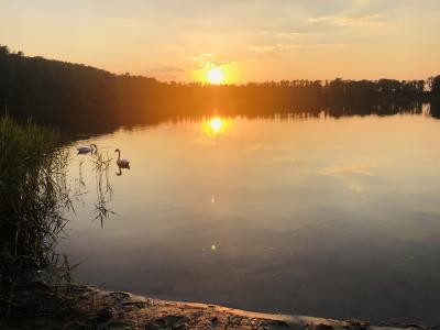 Foto zur Meldung: Bürger wollen Rundweg um Görnsee freischneiden