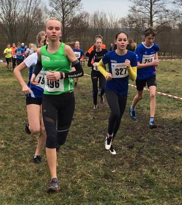Vorschaubild zur Meldung: Bayerische Crosslaufmeisterschaften