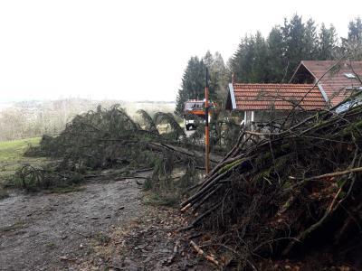 """Vorschaubild zur Meldung: Sturm """"Sabine"""" – Dank an die Einsatzkräfte"""