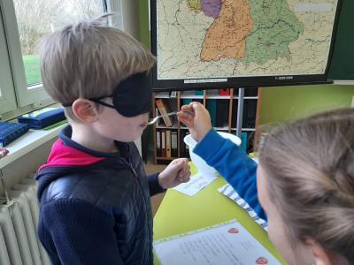 Foto zur Meldung: Sachunterricht in den Klassen 1/2 a und b: Unsere Sinnesorgane und unsere Sinne